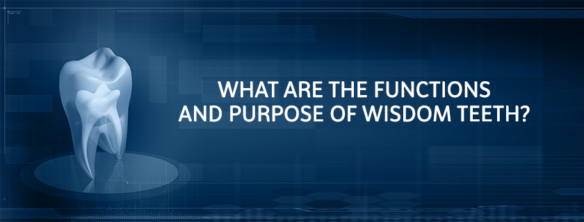 What are the Functions and Purpose of Wisdom Teeth?